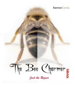 #the bee charmer