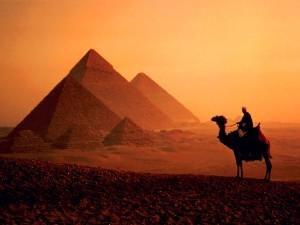 #estafas piramidales