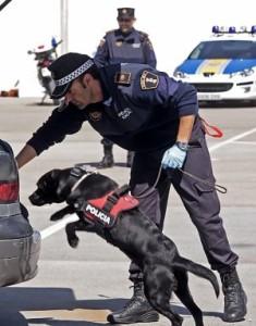 Registro policial con perros sin orden judicial