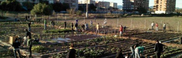 #Suelo agrario infrautilizado